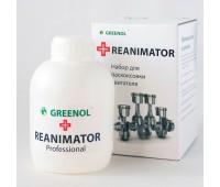 Greenol Reanimator Раскоксовка 450 мл.